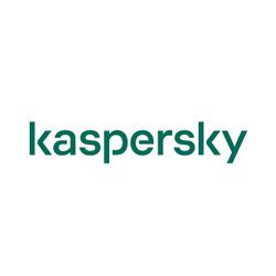 Kaspersky Hours
